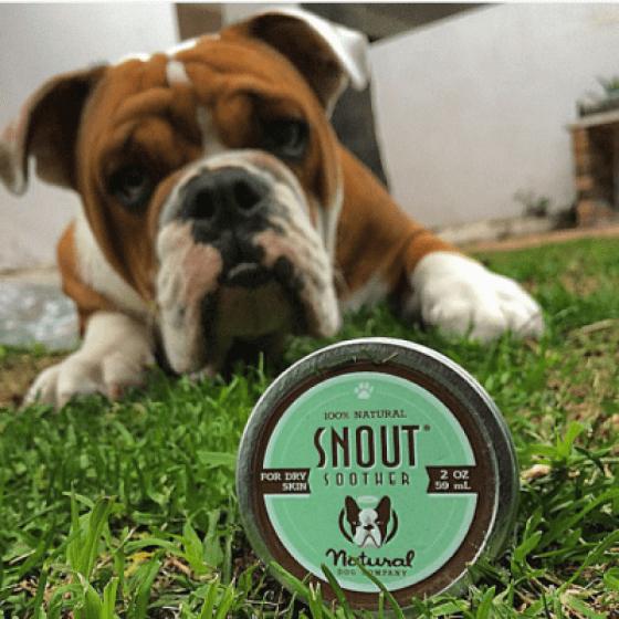 Καταπραϋντική Κρέμα Μύτης Snout Soother 8ml 5