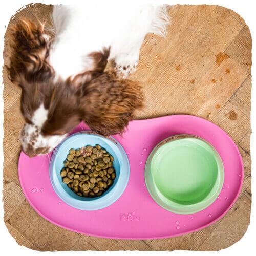 Αντιολισθητικό Σουπλά Σκύλου Beco 3