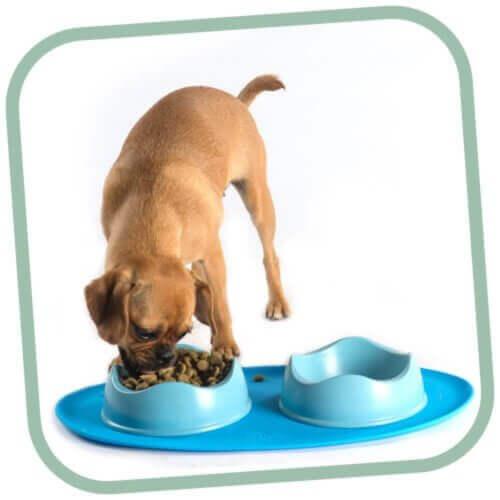 Αντιολισθητικό Σουπλά Σκύλου Beco-μπλε 3