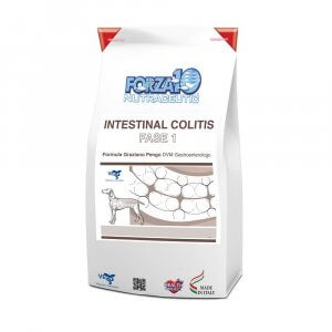 FORZA10 Intestinal Colitis Fase I