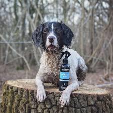 MUCKY PUP NO-RINSE SHAMPOO SPRAY ANIMOLOGY - dog line Σ Π Ρ Ε Ϊ-250ml 6