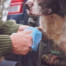 ANIMOLOGY CLEAN SHEETS - dog line 20τμχ. 3