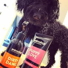 DIRTY DAWG NO-RINSE SHAMPOO SPRAY ANIMOLOGY - dog line Σ Π Ρ Ε Ϊ -250ml 3