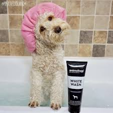 WHITE WASH SHAMPOO ANIMOLOGY DOG LINE ΣΑΜΠΟΥΑΝ – 250ml 3