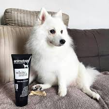 WHITE WASH SHAMPOO ANIMOLOGY DOG LINE ΣΑΜΠΟΥΑΝ – 250ml 5