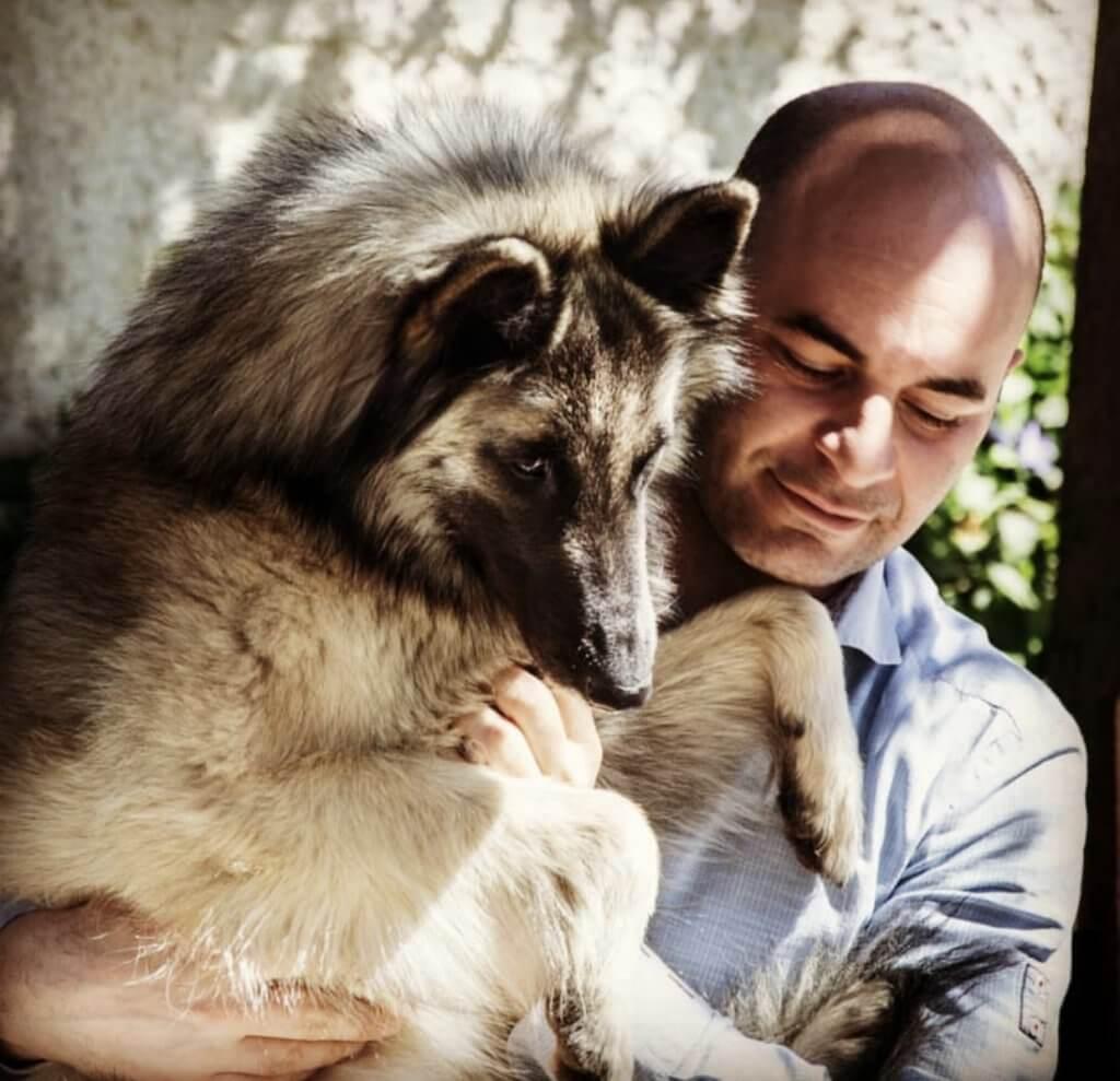 Σχέση παιδιού και σκύλου