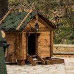 FORESTLAND το 1ο Πρότυπο πάρκο σκύλων στην Αττική 10