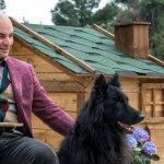 FORESTLAND το 1ο Πρότυπο πάρκο σκύλων στην Αττική 9