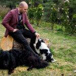 FORESTLAND το 1ο Πρότυπο πάρκο σκύλων στην Αττική 8